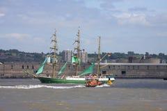 ståta seglar högväxt ships Royaltyfri Bild