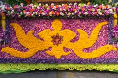 Ståtabilarna dekoreras med många sorter av blommor i ettåriga växten 42. Chiang Mai Flower Festival Royaltyfria Foton