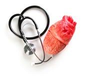 Stéthoscope et modèle de coeur sur le fond clair Images stock