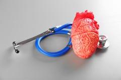 Stéthoscope et modèle de coeur sur le fond gris Photos stock