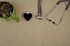 stéthoscope, tableau noir vide sous forme de coeur, fleur sur c Images libres de droits