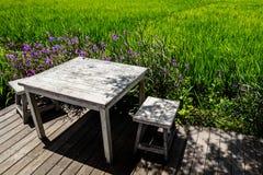 Stół przy otwarty teren kawiarnią na krawędzi ryżowego pola, Umalas, Bali wyspa, Indonezja Zdjęcia Stock