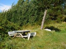Stół robić drewno po środku natury Zdjęcia Royalty Free