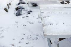 Stół zakrywający z śniegiem Zdjęcia Stock