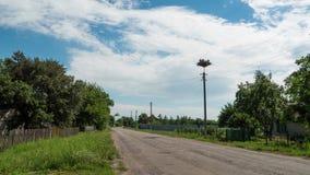 Störche, die in einem Nest auf Hochspannungsleitungen einer Säule im Dorf sitzen Geschossen auf Kennzeichen II Canons 5D mit Haup stock video