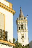 Störche nisten auf weißem Kathedralenturm mit schönem Sonnenlicht im Dorf von Süd-Spanien weg von der Landstraße A49 westlich von lizenzfreies stockbild