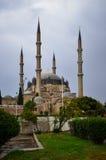 störst kalkon för edirne moskéselimiye Arkivbild