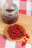 Störung mit Beeren einer roten Johannisbeere Lizenzfreie Stockbilder
