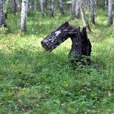 Stück altes Holz auf grünem Gras Stockbilder