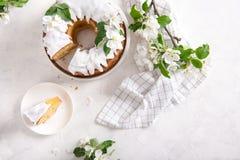 St?ck des k?stlichen Apfelkuchens mit Zimt und Zuckerglasur auf wei?em Hintergrund mit bl?henden Apfelniederlassungen Set von 9 A lizenzfreie stockfotos