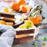 Stück des köstlichen Schokoladenkuchens Stockbilder