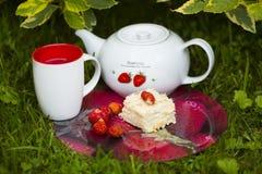 Stück des Kuchens auf roter Glasplatte mit Erdbeeren, frische Beeren, weiße und rote Schale und Teekanne Lizenzfreie Stockfotografie