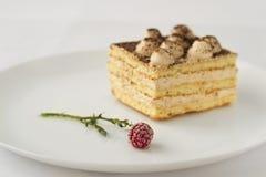 Stück des Kuchens mit Kakao und gefrorene Himbeeren blühen Stockfotos