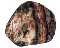 Stück des roten Jaspisses mit Weiß und Makro der schwarzen Flecke lokalisiert lizenzfreie stockfotos