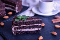 Stück des Schokoladenkuchens stockfotografie