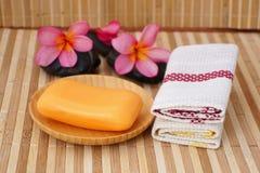 Stück Seifen mit Tüchern Lizenzfreie Stockbilder