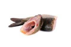 Stücke der Karpfenleiste mit Fischflocken lizenzfreies stockfoto