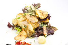 Stücke des Huhns mit Reis, Pfirsich und Petersilie in der weißen Schüssel getrennt auf weißem Hintergrund stockfotografie