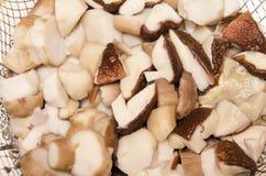 Stücke gekochte Pilze für Suppe lizenzfreie stockfotos
