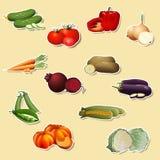 Stücke Gemüse: Mais, Kartoffeln, Tomaten, Karotten, Pfeffer Stockbild