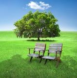 Stühle auf dem Gebiet Lizenzfreies Stockbild