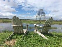 Stühle, die einen Sumpf und einen Baum betrachten Lizenzfreie Stockfotografie