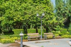 Stühle im Garten Stockfotografie