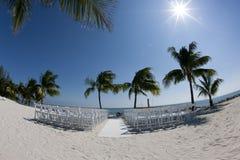 Stühle unter Palme Stockfotografie