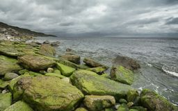 Stürmische Küstenlinie Lizenzfreie Stockfotografie