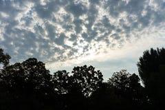 Stürmische Wolken über der Baumgrenze forrest mit blauem und rotem Himmel Lizenzfreie Stockbilder