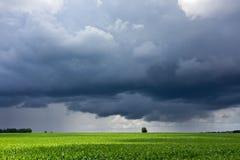 Stürmischer Himmel und Feld Stockfotos