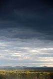 Stürmischer Himmel unter dem Wald Lizenzfreies Stockfoto