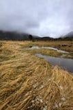 Stürmisches Wetter bei Rocky Mountain National Park lizenzfreies stockbild