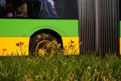 Stützbarer Transport - gelbgrüne Natur Stockfotos