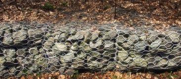 Stützmauer des Felsens Stockbilder