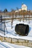 St克拉拉葡萄园, Troja,布拉格,捷克共和国 库存照片