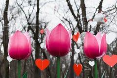 St华伦泰装饰在公园 红色和白色手工制造心脏 紫色郁金香 免版税库存图片