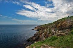 St Иван острова Стоковая Фотография RF