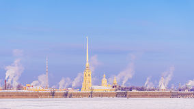 st Паыля peter petersburg крепости разветвляет зима взгляда вала снежка ели Стоковое Изображение RF