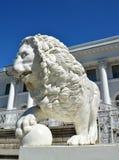 ST ПЕТЕРБУРГ, РОССИЯ - 11-ОЕ ИЮЛЯ 2014: Белый каменный лев с Стоковое Фото