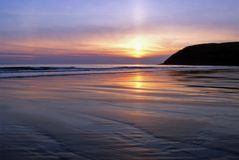 st следа ноги пчел пляжа Стоковая Фотография RF