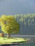 st утра moritz озера Стоковое фото RF