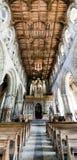 St戴维兹大教堂教堂中殿垂直全景 库存图片