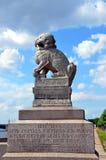 ST 圣彼得堡,雕塑SHIH TSZA狮子 库存照片
