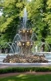 ST 彼得斯堡俄国 冠喷泉在夏天庭院里 库存图片