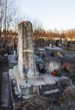 ST 彼得斯堡,俄罗斯- 2015年12月27日:纪念碑的照片在语言学家Knorozov坟墓的  免版税图库摄影