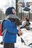 ST 彼得斯堡,俄罗斯- 3月05 :孩子喂养从手,俄罗斯-一只鸽子2017年3月05日的 库存图片
