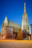 St.斯蒂芬大教堂和圣诞树 免版税库存图片