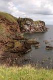 St Abbs Head. On the east coast of Scotland Royalty Free Stock Photos