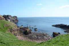 St. Abbs Head Coast Royalty Free Stock Images